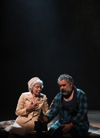 long forgotten dream sydney theatre company