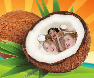 Coconut Collective Clan